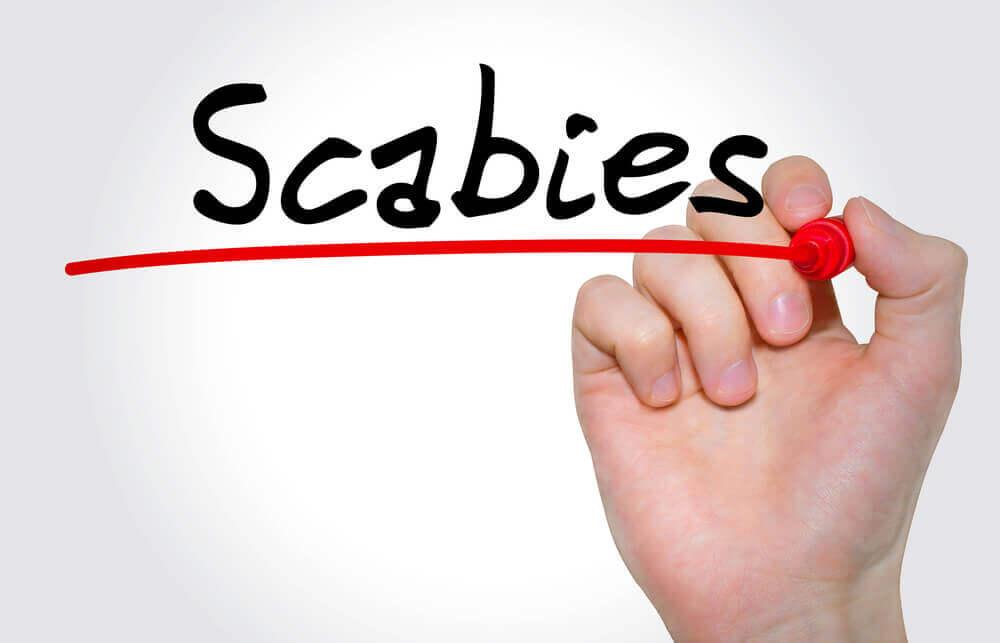 Eine Hand schreibt Scabies
